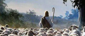 El buen pastor da su vida por las ovejas