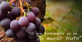 El que permanece en mí y yo en él, ese da fruto abundante